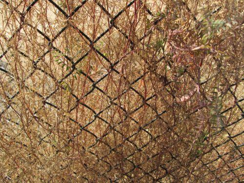Chain Link Pattern 1