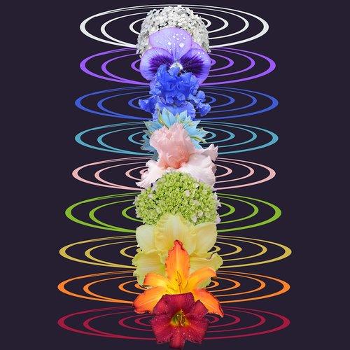 chakras  rainbow  chakra