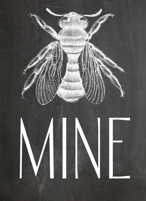 chalkboard bee blackboard