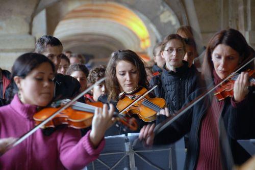 chamber music violin viola
