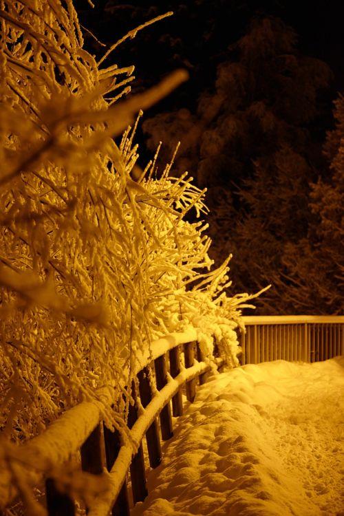 chamonix winter snowfall