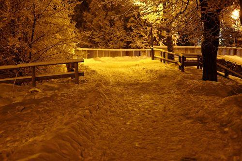 chamonix snowfall snow