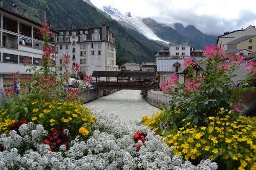 chamonix flowers france