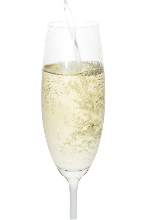 champagne celebrate alcohol