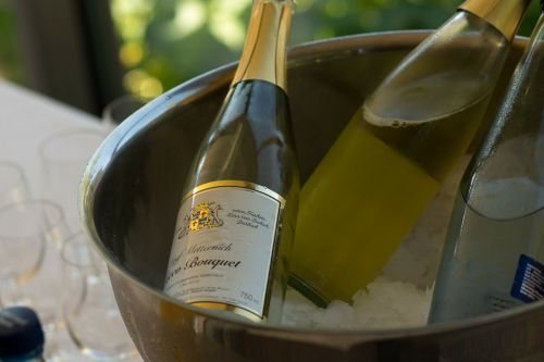 champagne bottle bucket
