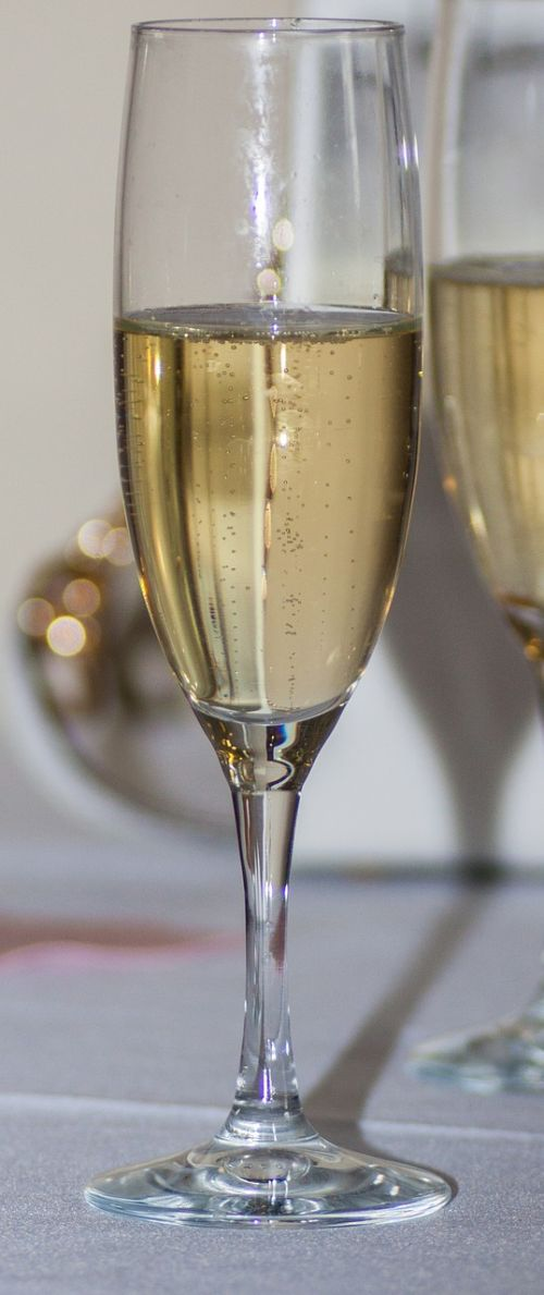 champagne alcohol celebrate