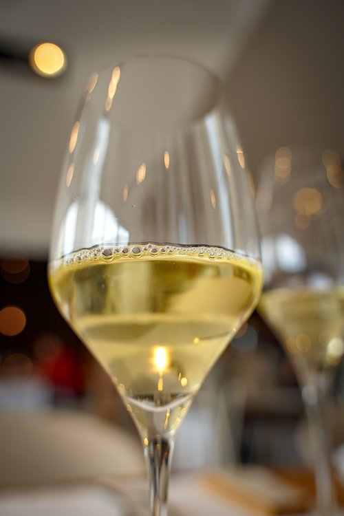 champagne  champagne glass  white wine
