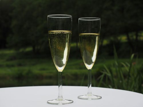 champagne champagne glasses drink