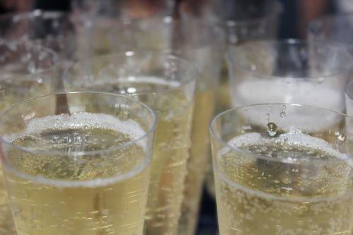 champagne champagne glass champagne glasses