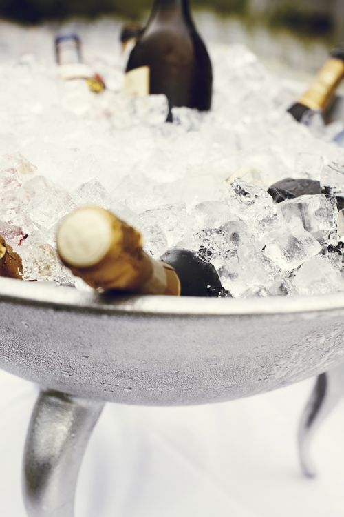 champagne cup champagne cooler champagne bucket