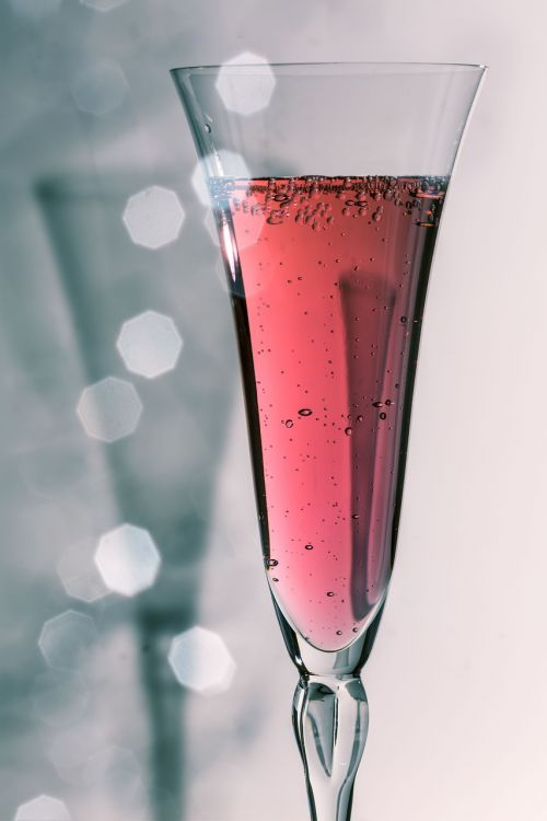 champagne glass champagne drink