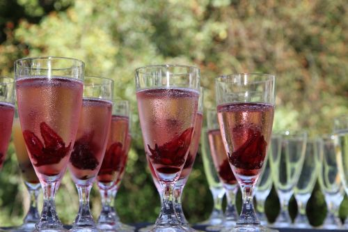 champagne glass red chilled