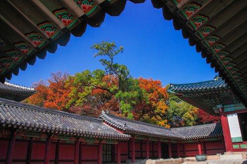 changdeokgung  secret garden  forbidden city