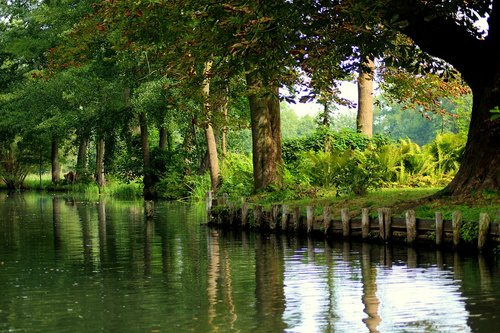 channel  landscape  green