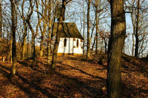 chapel small church autumn forest
