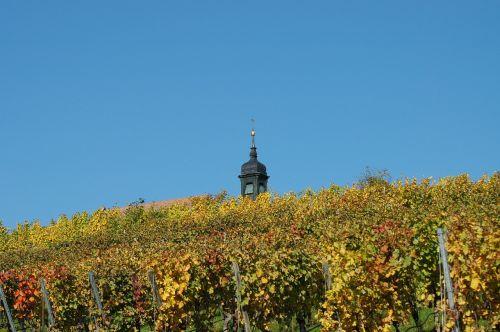 chapel vineyard spire