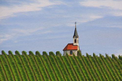 chapel vineyard nature