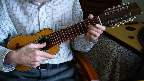 charango andean stringed instrument