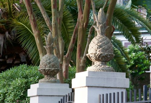 charleston pineapple south