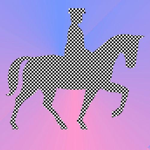 Checker Rider