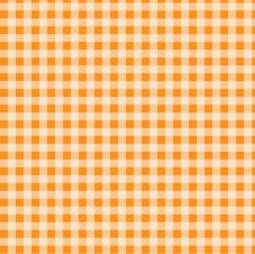Checks Orange Gingham Background