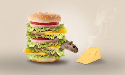 cheese mouse hamburger