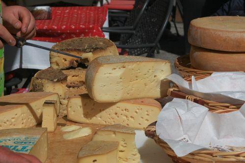 cheese made in malga asiago
