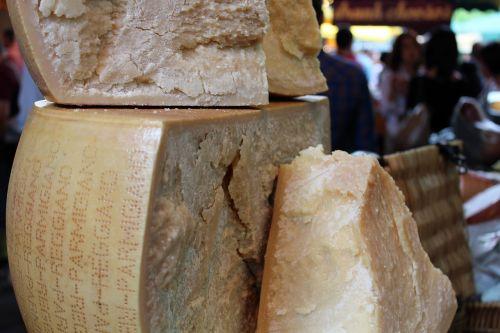cheese parmesan cheese wheel