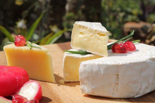 cheese camembert mature cheddar