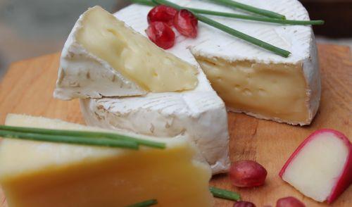 cheese camembert healthy
