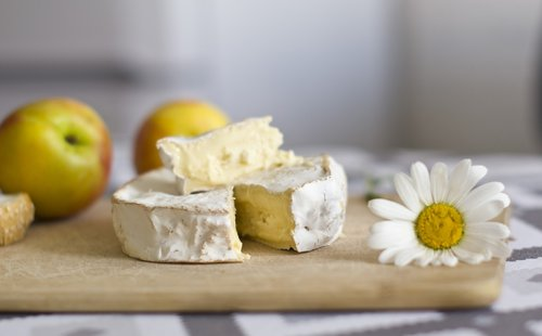 cheese  camembert  nutrition