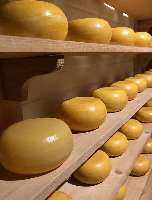 cheese  gouda  food