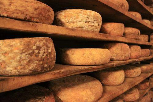 cheese cheese wheel cheese truckle