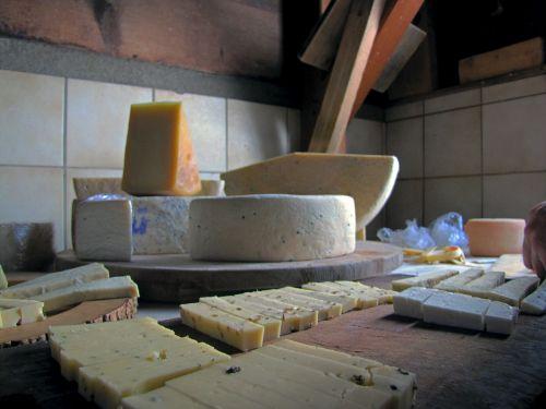 cheese cheese shop alp