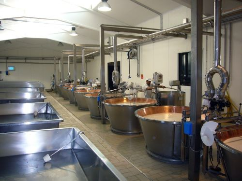 cheese parmesan production