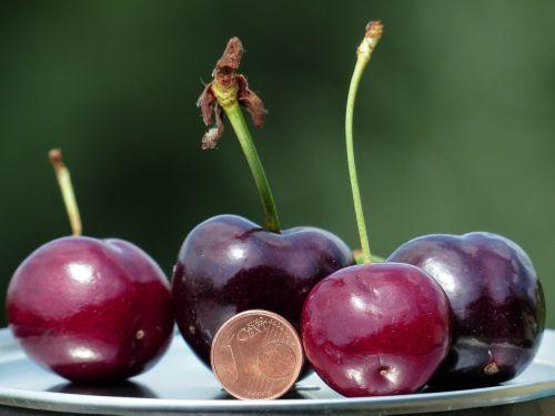 cherries large huge
