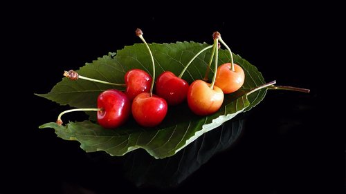 cherries  glass cherries  fruits