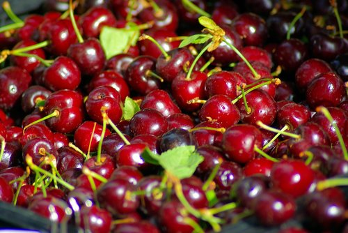 cherries at the town square  cherries  farmers