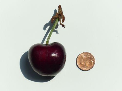 cherry large huge