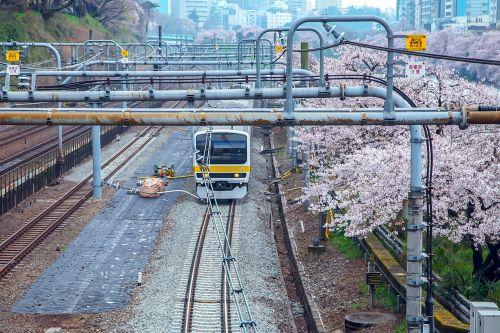cherry japan electric train