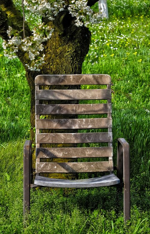 cherry grass garden chair