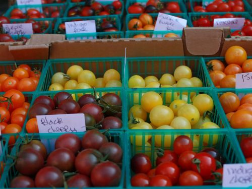 cherry tomato tomatoes in a basket farmers market