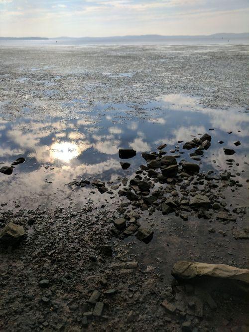 chesapeake bay low tide water