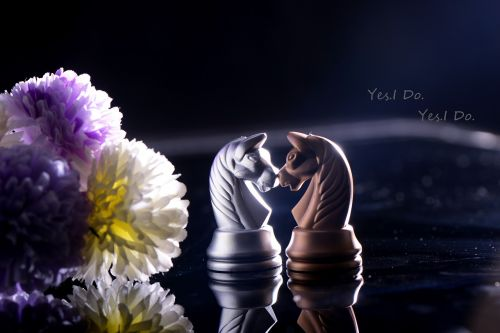chess love story