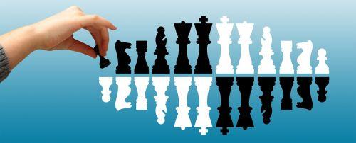 chess bauer hand