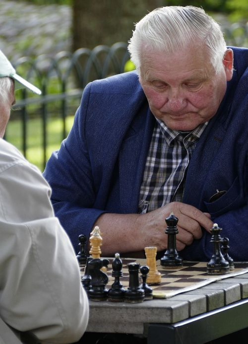 chess chess game chess player