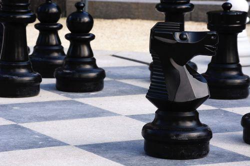 chess knight black