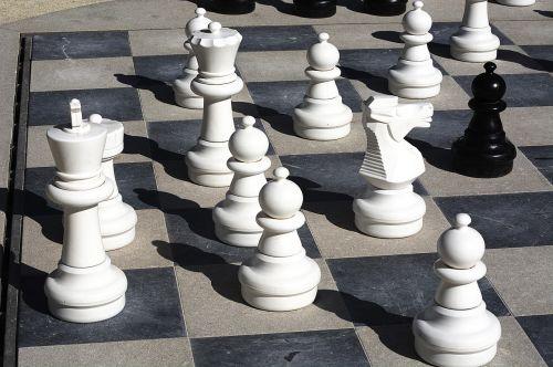 chess king white