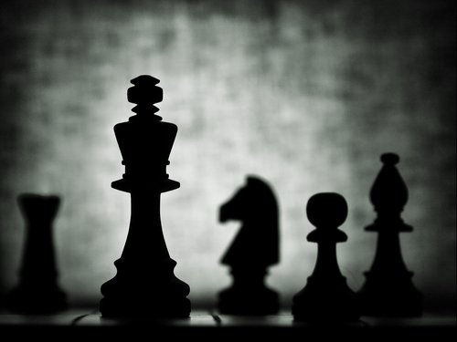 chess  still life  silhouette