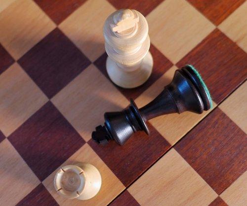 chess  denksport  mind game